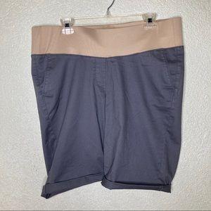 LOFT Maternity Shorts Size 14 NWT